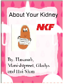 About Your Kidney