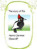 The Story of Rio