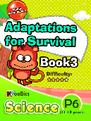Adaptations for Survival - Primary 6 - Book 3