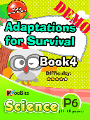 Adaptations for Survival - Primary 6 - Book 4