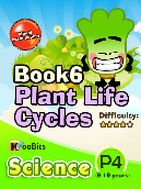 Plant Life Cycles - P4 - Book 6