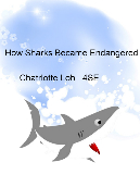 How Sharks Became Endangered