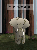 Andy the Elephant