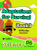 Adaptations for Survival - Primary 6 - Book 1