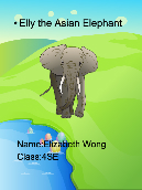Elly the Asian Elephant
