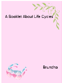 A Booklet About Life Cycles
