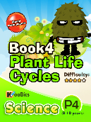 Plant Life Cycles - P4 - Book 4