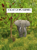 A Story of Two Elephants