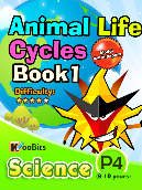 Animal Life Cycles - P4 - Book 1