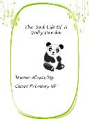The sad life of a baby panda