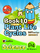 Plant Life Cycles - P4 - Book 10