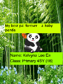My best pal forever – a baby panda
