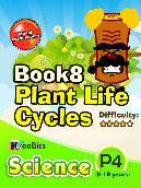 Plant Life Cycles - P4 - Book 8