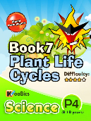 Plant Life Cycles - P4 - Book 7