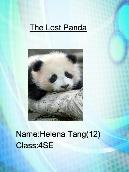 The Lost Panda