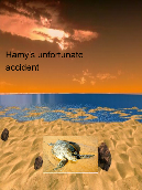 Hamy's unfortunate accident