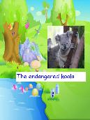 The Endangered Koala