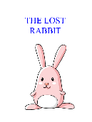 The Lost Rabbit