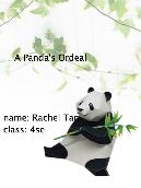 A Panda's Ordeal