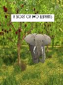 A Story of Two Elephants