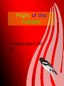 Flight of the Falcons