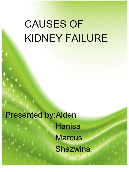 Causes of kidney failures